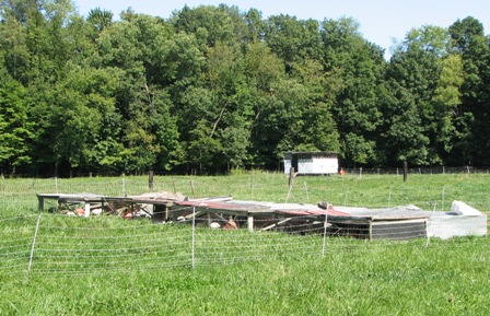 Moveable chicken houses