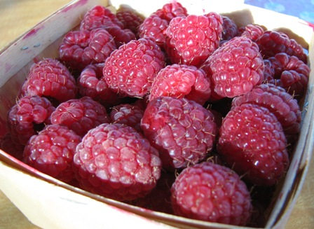 IMG_7216_michiganraspberries