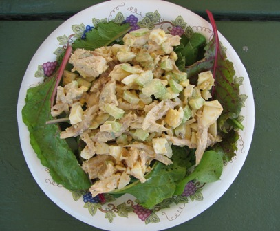 Chicken-and-Egg Salad for the road