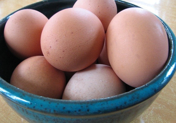 Eggs from pastured poultry