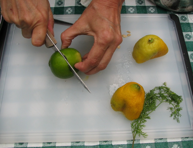 Sandy cuts up a lime for the yogurt sauce