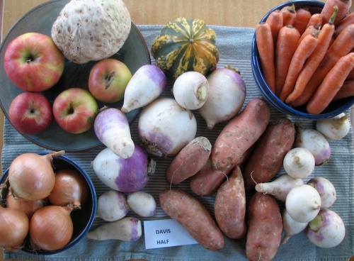 Half share of produce from Lakeshore Family Farm