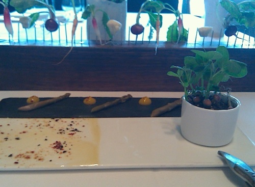 Vegetables on a Fence and Pickled Asparagus