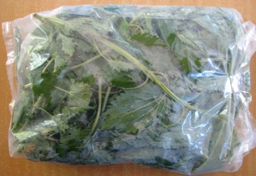 Stinging Nettles from Mud Lake Farm